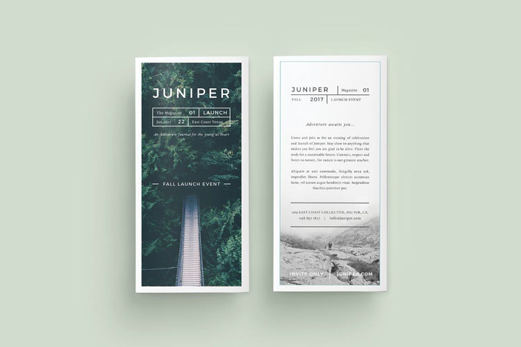 Best Tri-Fold Brochure Templates