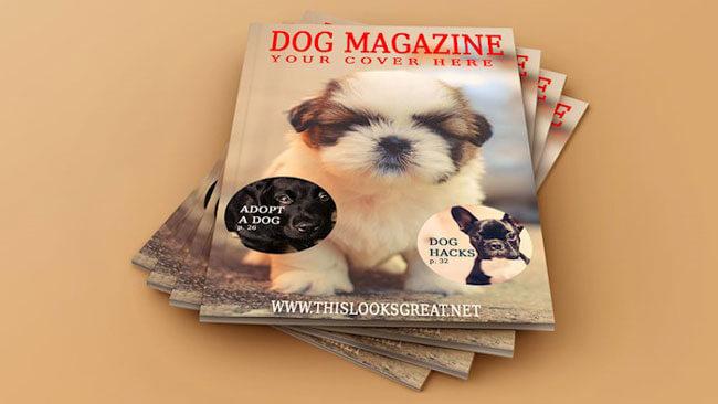 Magazine Mockup Templates Free