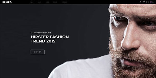 best wordpress fashion theme