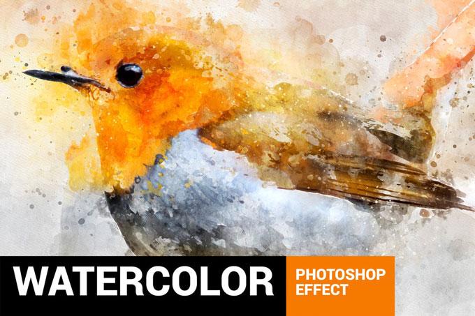 Watercolor Birds Photoshop Action